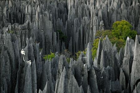 Parc-national-Tsingy